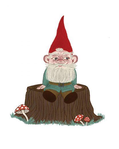 Reflective Gnome